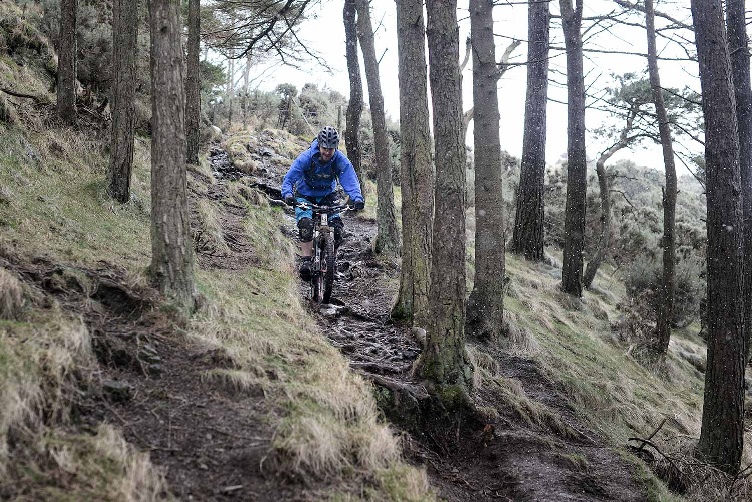 Mountain biker riding steep rooted trail through forest in bad weather